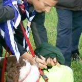 Autographe Sur chien Bear Grylls