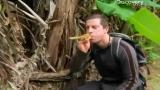 Man vs Wild-A l'ouest du Pacifique