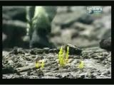 Man vs Wild-Hawaï (Mont Kilauea)