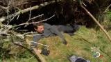 Man vs Wild-Travail sur la nature