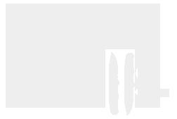logo beargrylls