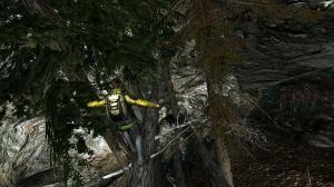 Jeux video man vs wild sur une branche