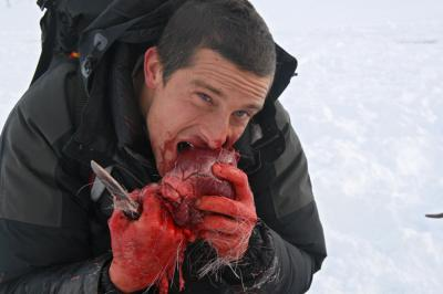 Bear mange un coeur